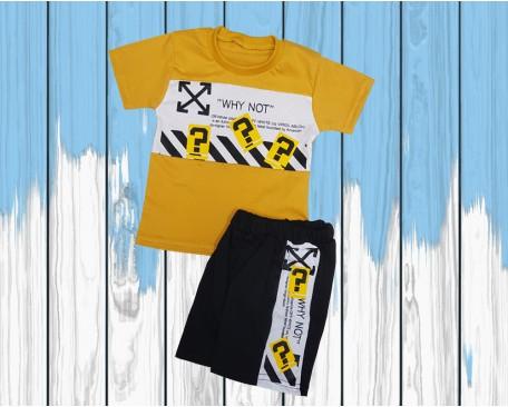 Футболка и шорты SKU-100-270