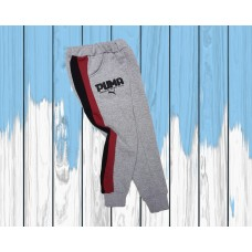 Спортивные штаны   (100-151)